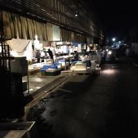 1/19・タカの「川崎北部市場へ行って来ました」