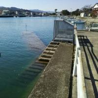 満潮の椀舟の港