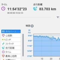 日記0284:向津具ダブルマラソンのレース総評