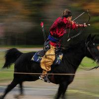 第5回高麗王杯 馬射戲(マサヒ)騎射競技大会