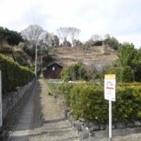 静岡 石脇城