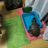 内風呂一番!
