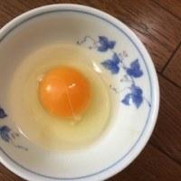 卵のパック…