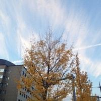 12月5日 冬の雲?