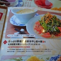 バーミヤンの「たっぷり野菜の濃厚冷やし担々麺」