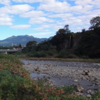夏日の利根川