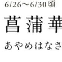 梅雨穴子(^^)d