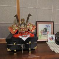 和光ホームの畑とカブト!