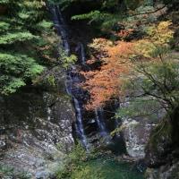 錦秋の渓谷3