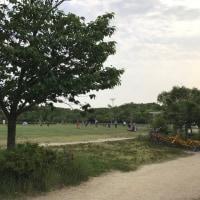 京都 梅の小路公園辺り
