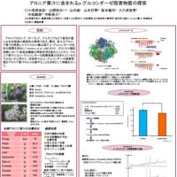 日本栄養・食糧学会における研究発表