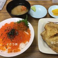 北海道 ⇒ 名古屋