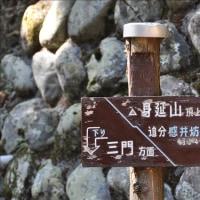 身延山(西ルート)登山④(回想)