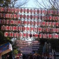 大國魂神社の豆まき