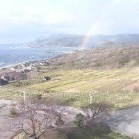 ライブカメラに虹が出てました。