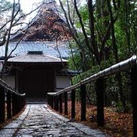 6日の散歩 ( 今宮神社、大徳寺から十二坊への散歩 )