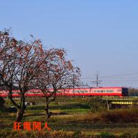 冬の入口の風物詩 柿に柿色の電車