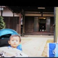 """息子からLINEで柊ちゃんの画像が・・・また一段と成長したようですが"""""""""""