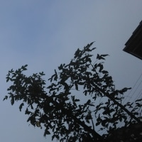 仙台の空6月24日、土曜日