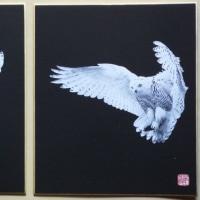 ◆「白フクロウ」 剪画(切絵) 小色紙(210x180mm)!!