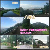 【モブログ】福井市内を一望♪足羽山〜八幡山