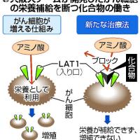 今日以降使えるダジャレ『2175』【科学】■がん細胞「兵糧攻め」、阪大チームが化合物開発