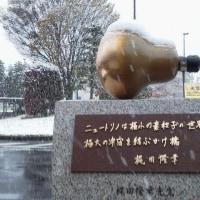 初雪とノーベル賞と20161124