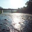 早朝の川は気持ちいいもので、