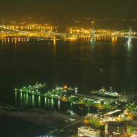 展望台からの夜景撮影