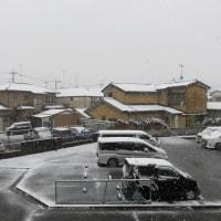 ☆ ビックリ!11月の「雪」 ☆