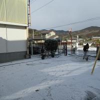 まさかの雪!神泉小