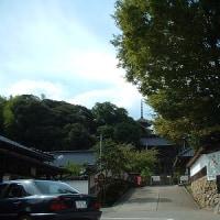 「さざれ石」のある寺