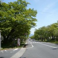 滋賀県母親大会現地大津事務所開きが行われました。