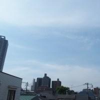 今朝(5月22日)の東京のお天気:晴れ、5月(後半)の作品:花を持つ童子