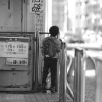 新宿   都営荒川線風景 面影橋~早稲田