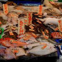 吉祥寺 ハーモニカ横丁の鮮魚店