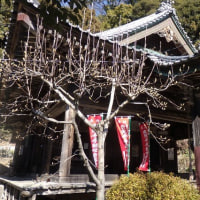 花沢の里 法華寺で手を合わす