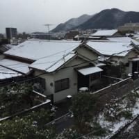 また  雪です