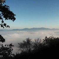雲海が見られます(^^)v