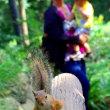 井の頭公園で可愛い生き物に会う☆