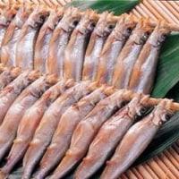 ◆シシャモ漁も終盤・・子持ちの日干しシシャモで熱燗は最高の季節に・・。