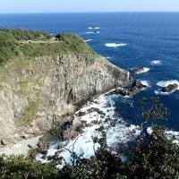 足摺岬を散策