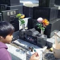 急きょ横須賀のお墓参りに