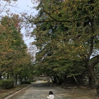 舞鶴公園でのイベントへ おちびと行って・・・工作体験!