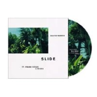 Calvin Harris feat. FrankOcean & Migos/Slide (12inch PictureVinyl)