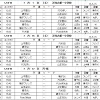 2017年度横浜市磯子区少年サッカー大会(U12-B)星取表&対戦表