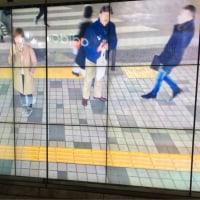 新宿サナギ