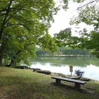 山田池公園 (2)
