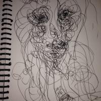 a portrait of fragile