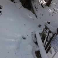 世界遺産大峯奥駆道を歩く  清浄大橋から大峰山へ向いましたが、雪と氷に痛めつけられて惨敗しました。2017年3月10日 その2